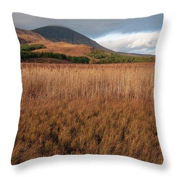 Loch Cill Chriosd Throw Pillow