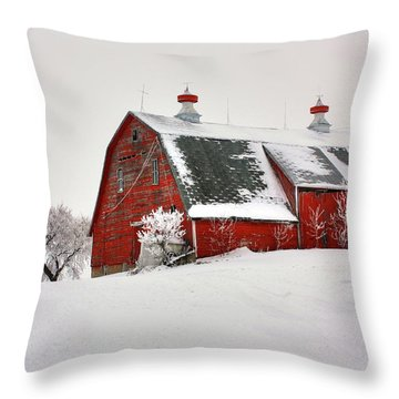 Lone Barn Throw Pillow