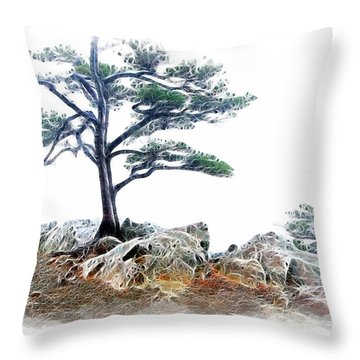 Lonely Planet Fx Throw Pillow