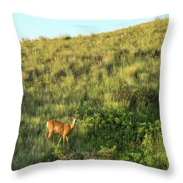 Lonesome Doe Throw Pillow