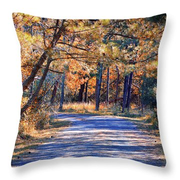 Throw Pillow featuring the photograph Long And Winding Road At Gordon's Pond by Bill Swartwout Fine Art Photography