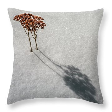 Long Shadow Of Winter Throw Pillow