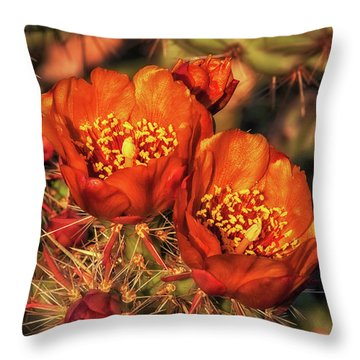 Look But Don't Touch Throw Pillow