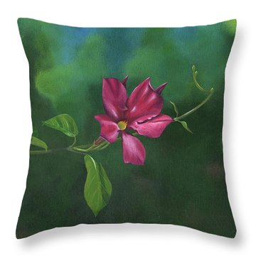 Looking For Something To Hold On To Throw Pillow