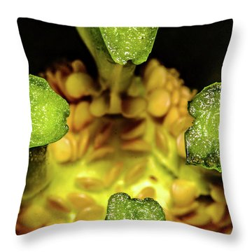 Looking Into A Pepper Throw Pillow