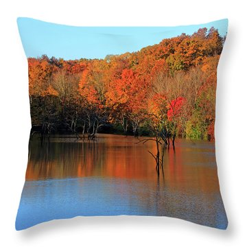 Throw Pillow featuring the photograph Looking Out Over Alum Creek by Angela Murdock