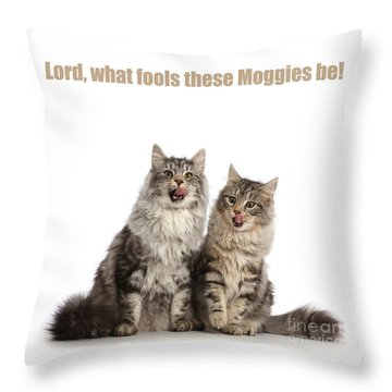 Throw Pillow featuring the photograph Lord, What Fools These Moggies Be by Warren Photographic