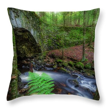 Throw Pillow featuring the photograph Lost Bridge by Bill Wakeley