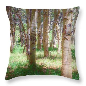 Lost In The Woods - Kenosha Pass, Colorado Throw Pillow