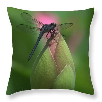 Throw Pillow featuring the photograph Lotus Bud And Slaty Skimmer Dragonfly Dl0006 by Gerry Gantt