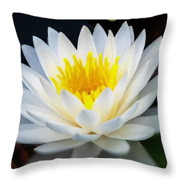 Lotus Gold Throw Pillow