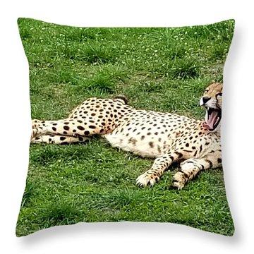 Lounging Cheetah Throw Pillow