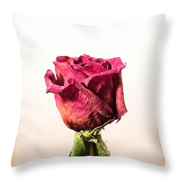 Love After Death Throw Pillow