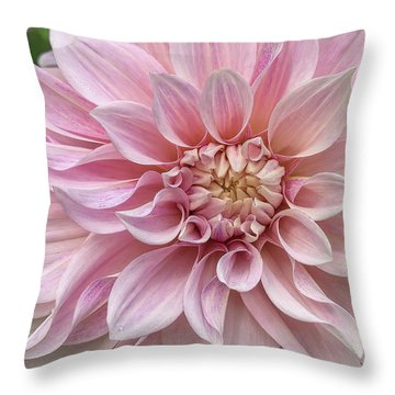 Lovely Dahlia Throw Pillow