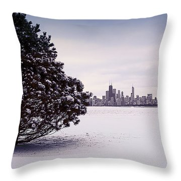 Throw Pillow featuring the photograph Lovely Winter Chicago by Milena Ilieva