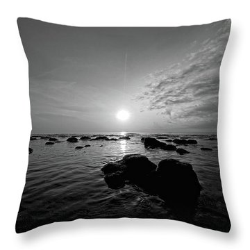 Low Tide 2 Throw Pillow