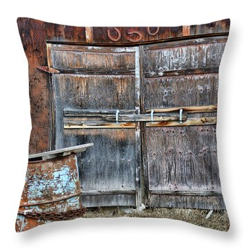 Lucky Door Throw Pillow