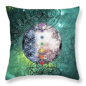 Lunar Mysteries Throw Pillow
