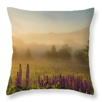 Lupine In The Fog, Sugar Hill, Nh Throw Pillow