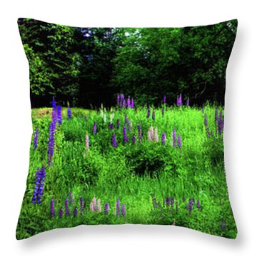 Throw Pillow featuring the photograph Lupine Panorama by Wayne King