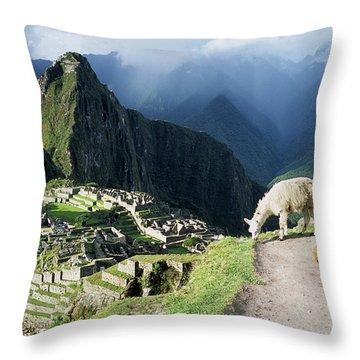 Machu Picchu And Llamas Throw Pillow