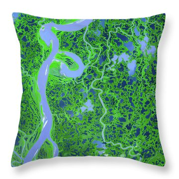 Mackenzie River Delta In Canada Throw Pillow