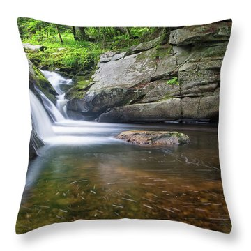 Mad River Falls Throw Pillow