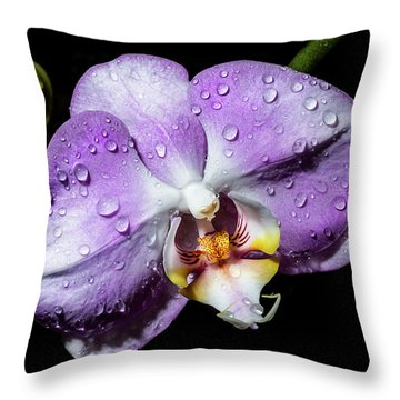 Magenta Phal Throw Pillow