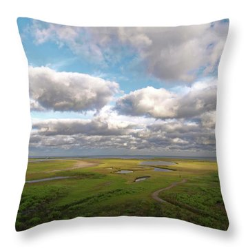 Maggies Cove Throw Pillow