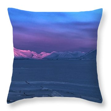 Magic Artic Throw Pillow