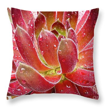 Magical Succulent Throw Pillow