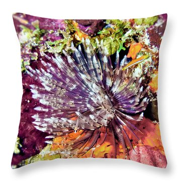 Magnificent Feather Duster Throw Pillow