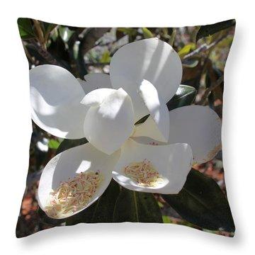 Magnificent Magnolia Throw Pillow