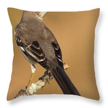 magnificent Mockingbird Throw Pillow