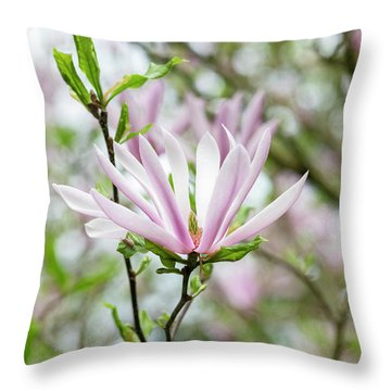 Magnolia Judy Flower Throw Pillow