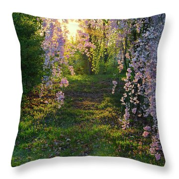 Magnolia Tree Sunset Throw Pillow