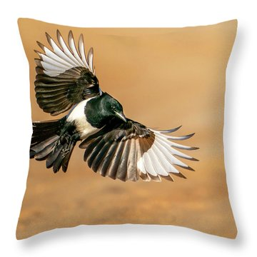 Magpie Beauty Throw Pillow