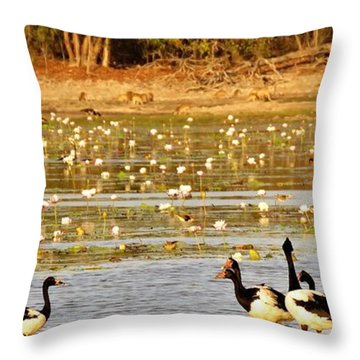 Magpie Geese And Wallabies Throw Pillow