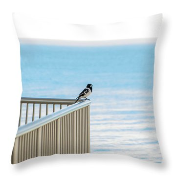 Magpie In Waiting Throw Pillow