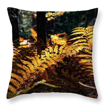 Throw Pillow featuring the photograph Maine Autumn Ferns by Jeff Folger