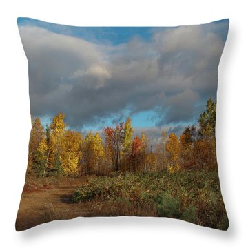 Maine Wilderness Color 2 Throw Pillow