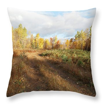 Maine Wilderness Color Throw Pillow