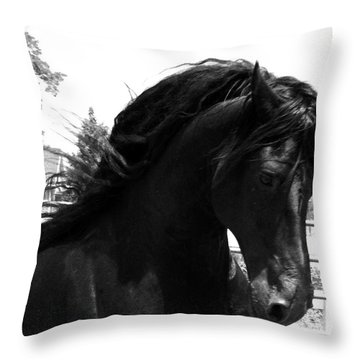 Majestic Beauty  Throw Pillow
