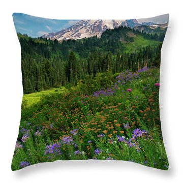 Majestic Color Throw Pillow