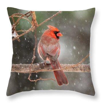 Male Red Cardinal Snowstorm Throw Pillow
