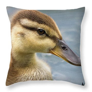Mallard Duckling Throw Pillow