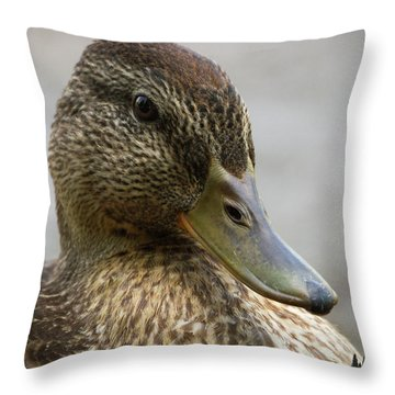 Mallard Hen Throw Pillow
