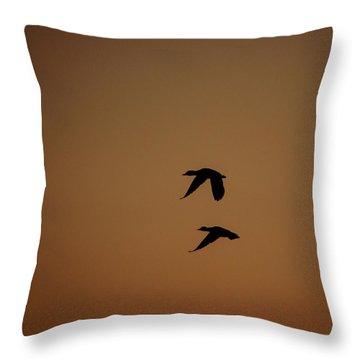 Mallard Morning Throw Pillow