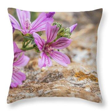 Malva Sylvestris - Spontaneous Flower Of The Tuscan Mountains Throw Pillow