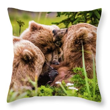 Mama Bear Nursing Her Two Cubs, Lake Clark National Park, Alaska Throw Pillow